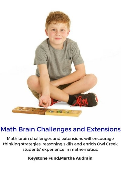 Math Brain Challenges and Extensions