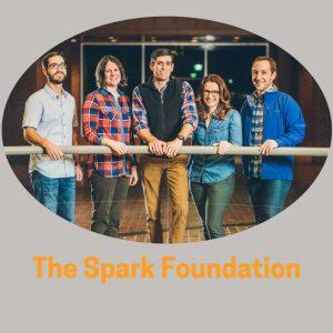 THe Spark Foundation (4)